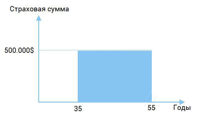 Срочное страхование жизни (Tetm Insurance) в России